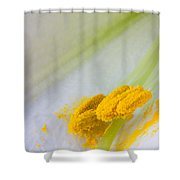 Easter Lily Macro Shower Curtain