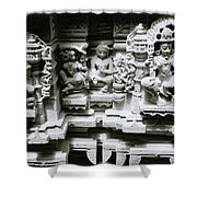 Eastern Beauty  Shower Curtain