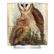 Eastern Grass Owl Shower Curtain