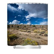 Eastern Sierras 10 Shower Curtain