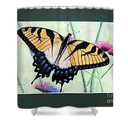 Eastern Tiger Swallowtail Butterfly By George Wood Shower Curtain