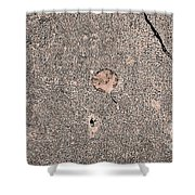 Eastern Time Shower Curtain