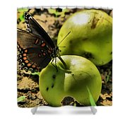 Eat Healthy Shower Curtain