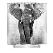 Ebony Ivory African Elephant Shower Curtain