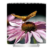 Echinacea And Friend Shower Curtain