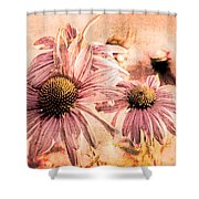 Echinacea Impressions  Shower Curtain