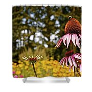 Echinacea With Bee Shower Curtain
