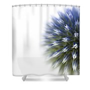 Echinops  Shower Curtain