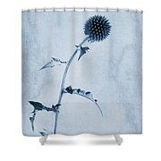 Echinops Ritro 'veitch's Blue' Cyanotype Shower Curtain