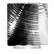 Echo Of Gong Shower Curtain