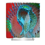 Echoing Seed Pod  Shower Curtain