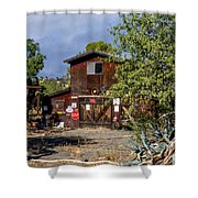 Eclecktic Building Signs Shower Curtain