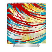 Eclectic Rays  Shower Curtain