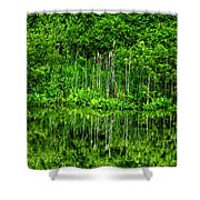 Eden 38 Oil Shower Curtain
