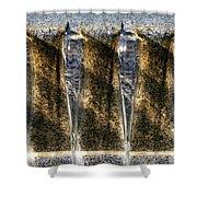 Edge Of A Fountain Shower Curtain