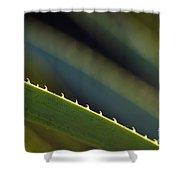 Edge Of A Sotol Leaf Shower Curtain