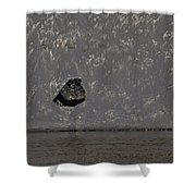 Edge Of The Yellowstone River   #4527 Shower Curtain