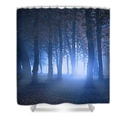 Eerie Woodland Scene At Nigh Time In Fog Shower Curtain