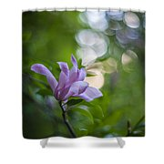 Effervescent Magnolia Shower Curtain
