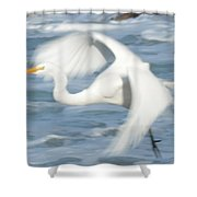 Egert In Flight Detail Shower Curtain