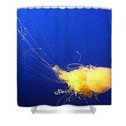 Egg - Yolk Jellyfish Shower Curtain