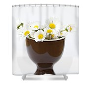 Eggcup Daisies Shower Curtain