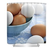 Eggs In Bowl Shower Curtain by Elena Elisseeva