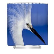 Egret 16 Shower Curtain
