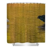 Egret And Canada Goose Shower Curtain