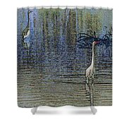 Egret And Heron Watching Shower Curtain