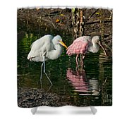 Egret And Pink Spoonbill Shower Curtain
