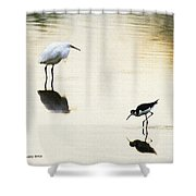 Egret And Stilt At The Grp Shower Curtain