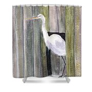 Egret At John's Pass Shower Curtain