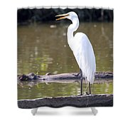 Egret Has A Lot To Say I Shower Curtain