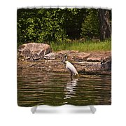 Egret In Central Park Shower Curtain
