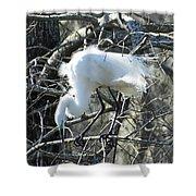 Egret In Lake Martin Swamp Louisiana Shower Curtain