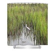 Egret In The Marsh Shower Curtain