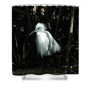 Egret Of Sanibel 2 Shower Curtain