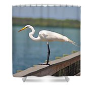 Egret On A Pier Shower Curtain