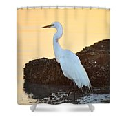 Egret On Dunedin Causeway Shower Curtain