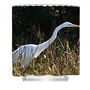 Egret On The Move Shower Curtain