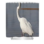 Egret Out Fishing Shower Curtain