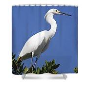 Egret Outlook Shower Curtain