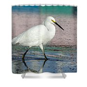 Egret Reflections- 2  Shower Curtain