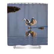 Egret Reflections Shower Curtain