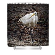 Egret Strut Shower Curtain