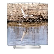 Egret Taking Off Shower Curtain