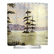 Egrets Over Wakulla Springs Shower Curtain