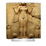 Egypt 1 Shower Curtain