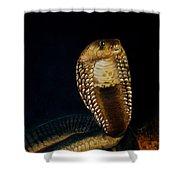 Egyptian Cobra Shower Curtain